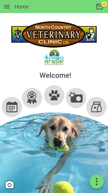 Ncvc 4 Paws By North Country Veterinary Clinic 4paws Pet Resort