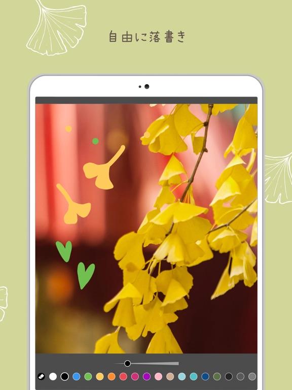 PicCollage 写真&動画コラージュのおすすめ画像8