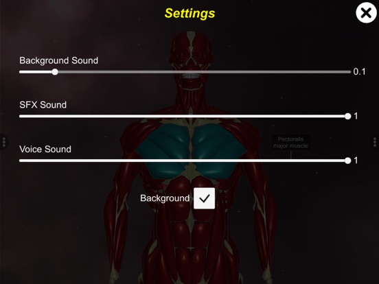 Learn Muscular System screenshot 14