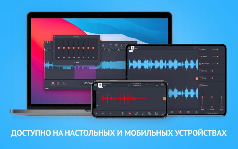 Аудиоредактор: Обработка звука скриншот программы 4