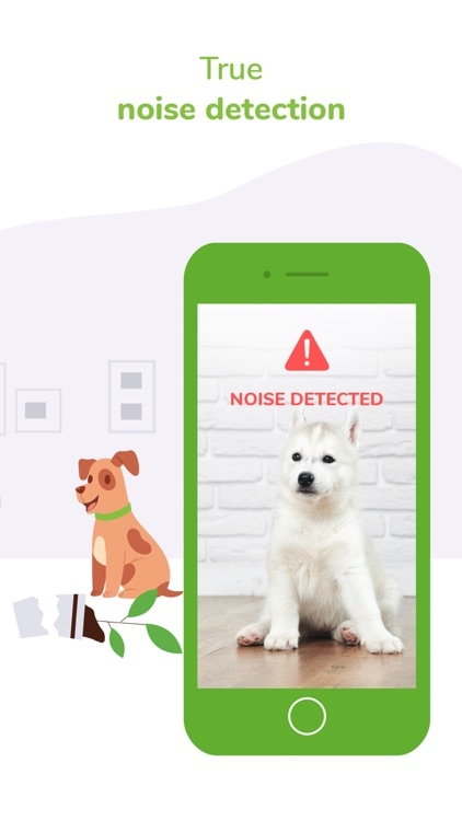 Surveillance Pet & Dog Monitor