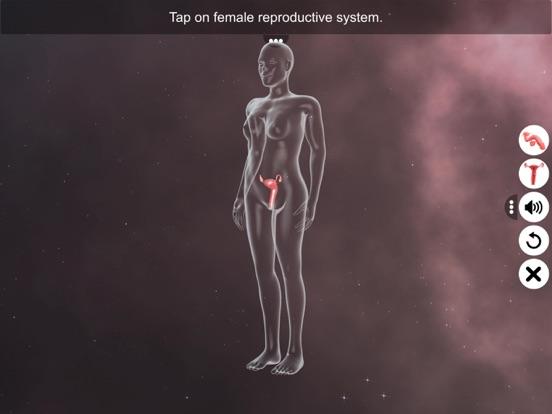 Human Reproductive System screenshot 12