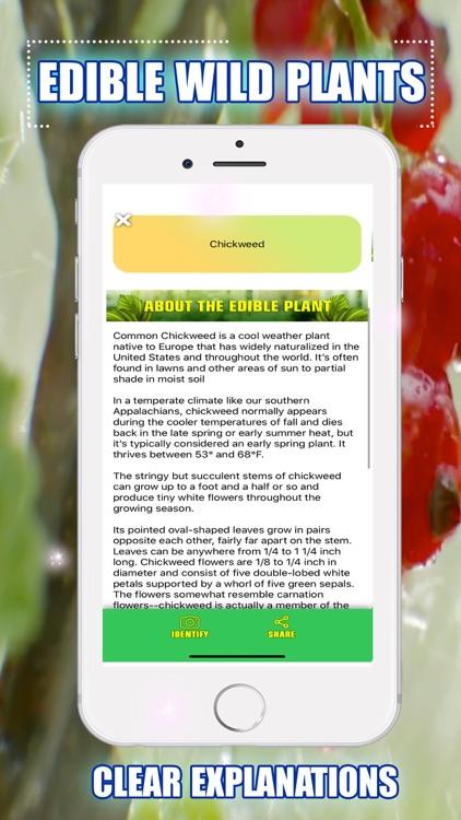 Edible Wild Plants screenshot-3
