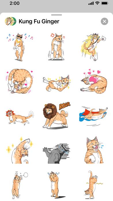 Kung Fu Ginger Screenshot