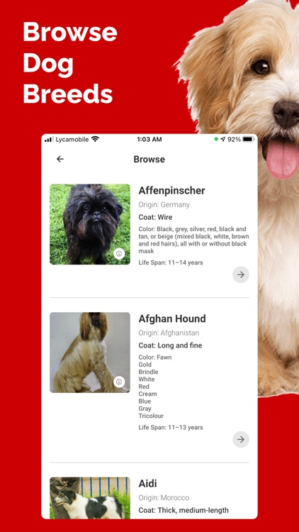 Dog Breed Identifier - Doge screenshot-5