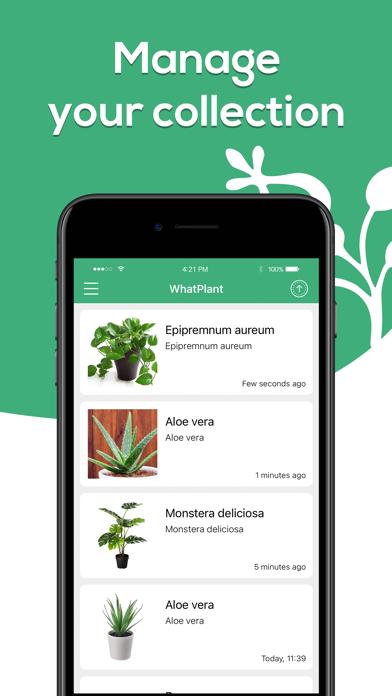 Plant Identifier - WhatPlant screenshot 5