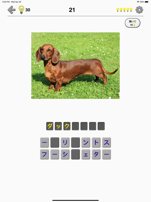 犬 - 写真付きクイズ、犬の品種一覧のおすすめ画像2