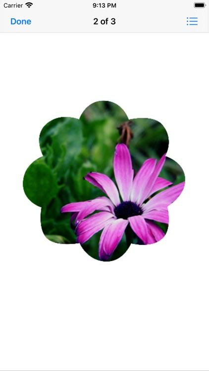 Flower Photo Sticks