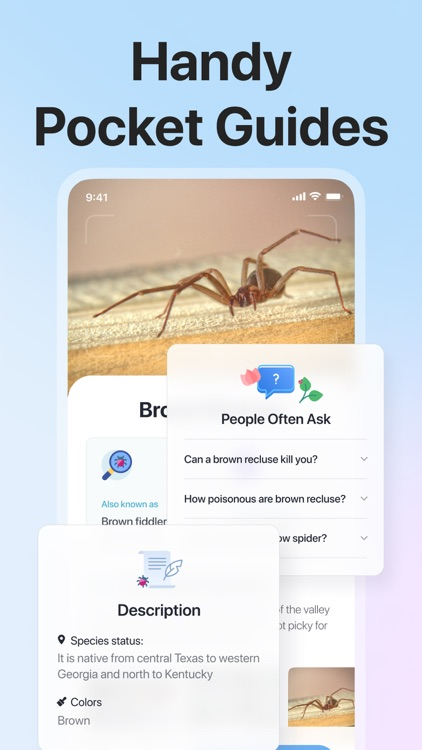Picture Insect: Bug Identifier screenshot-4