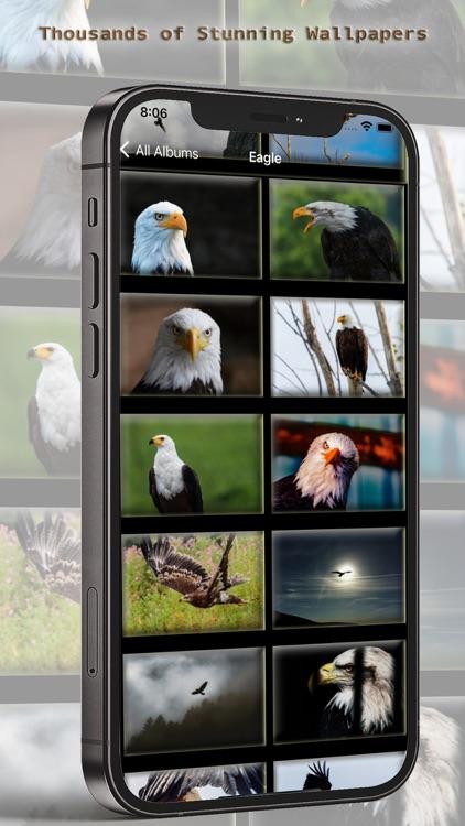 10000 Animal Wallpapers screenshot-6