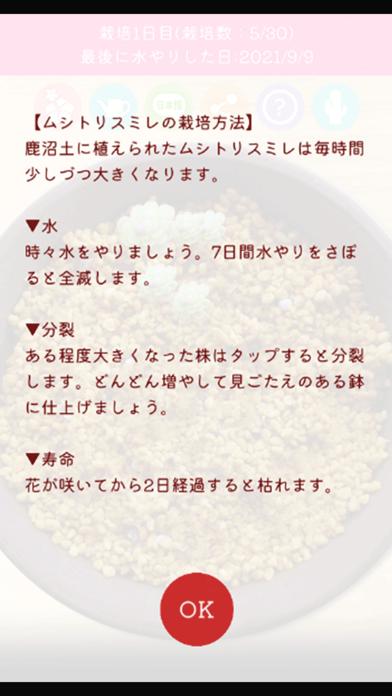 ムシトリスミレ栽培シミュレーション紹介画像5
