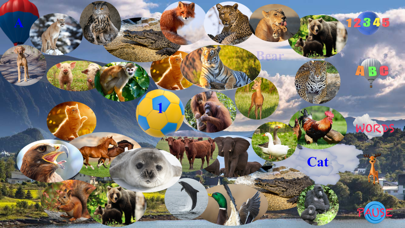 Animal Touch Sounds 2 Screenshots