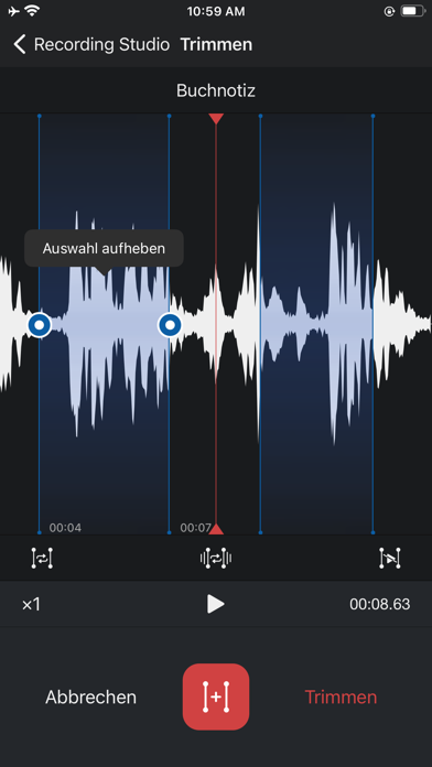 Diktiergerät Pro, Aufnahme-AppScreenshot von 3
