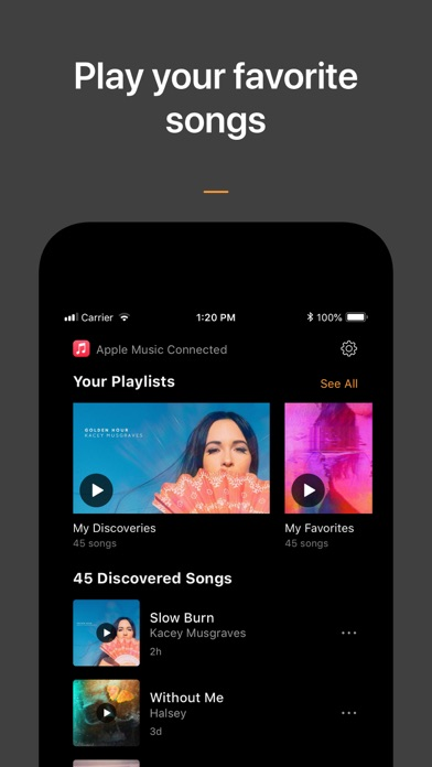 SoundHound - Music Discovery iPhone