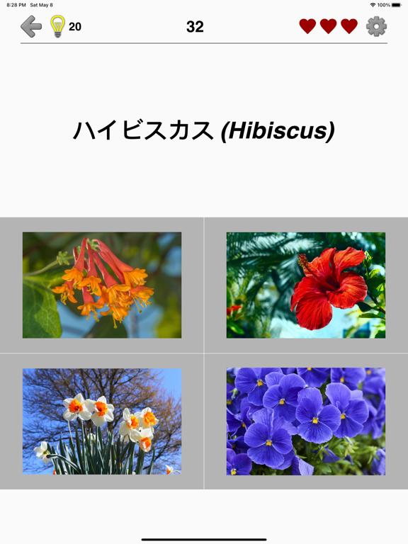 花 - 美しい植物についての植物のクイズのおすすめ画像4
