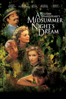 Michael Hoffman - A Midsummer Night's Dream  artwork