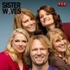 Sister Wives, Season 3 wiki, synopsis