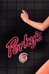 Porky's wiki, synopsis