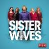 Sister Wives, Season 6 wiki, synopsis