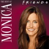 The Best of Monica wiki, synopsis