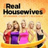 The Real Housewives of Orange County, Season 4 wiki, synopsis