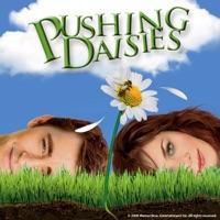 Télécharger Pushing Daisies, Saison 1 Episode 4