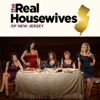 The Real Housewives of New Jersey, Season 2 wiki, synopsis