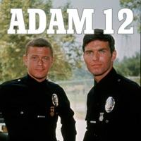 Télécharger Adam 12, Season 1 Episode 25