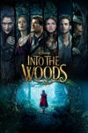 Into the Woods  wiki, synopsis