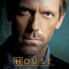 House, Season 3 - Synopsis and Reviews