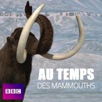Télécharger Aux temps des mammouths Episode 3
