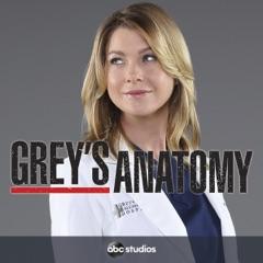 Grey's Anatomy, Season 12 (Subtitled)