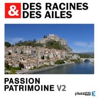 Télécharger Des Racines & des Ailes, Passion patrimoine, Vol. 2 Episode 1