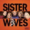 Sister Wives, Season 2 wiki, synopsis