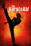 The Karate Kid  wiki, synopsis