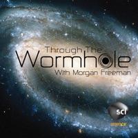 Through the Wormhole with Morgan Freeman, Season 1