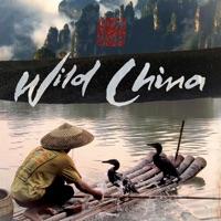 Télécharger Wild China, Series 1 Episode 6