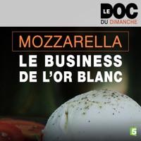 Télécharger Mozzarella, le business de l'or blanc Episode 1