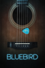Brian A. Loschiavo - Bluebird  artwork