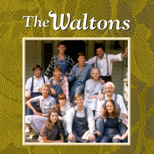 The Waltons: The Complete Series (HD TV Show)