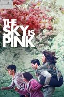 Shonali Bose - The Sky Is Pink artwork