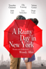 Woody Allen - A Rainy Day in New York  artwork
