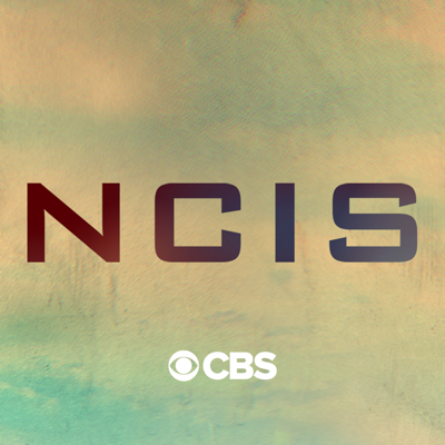 NCIS, Season 17 HD Download