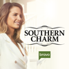 Southern Charm - In Sew Deep  artwork