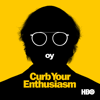 Curb Your Enthusiasm - Happy New Year  artwork
