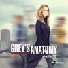 Grey's Anatomy - Darf ich bitten?  artwork