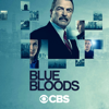 Blue Bloods - Spilling Secrets  artwork