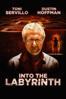 Donato Carrisi - Into the Labyrinth artwork