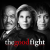 The Good Fight - The One Where a Nazi Gets Punched  artwork