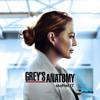 Grey's Anatomy - Jemand hat mir heute Nacht das Leben gerettet  artwork